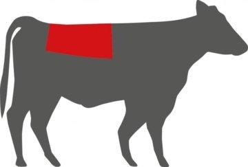 Fleisch für Dry Ager